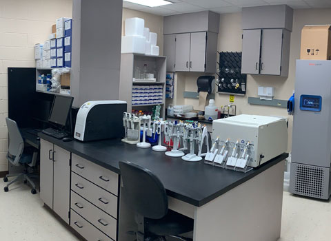 Cellular Exercise Physiology Lab