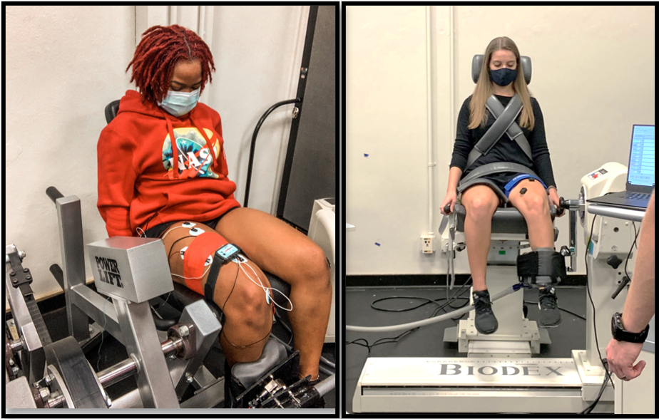 Isotonic vs Isokinetic Leg Extensions: Differences in Neuromuscular Function